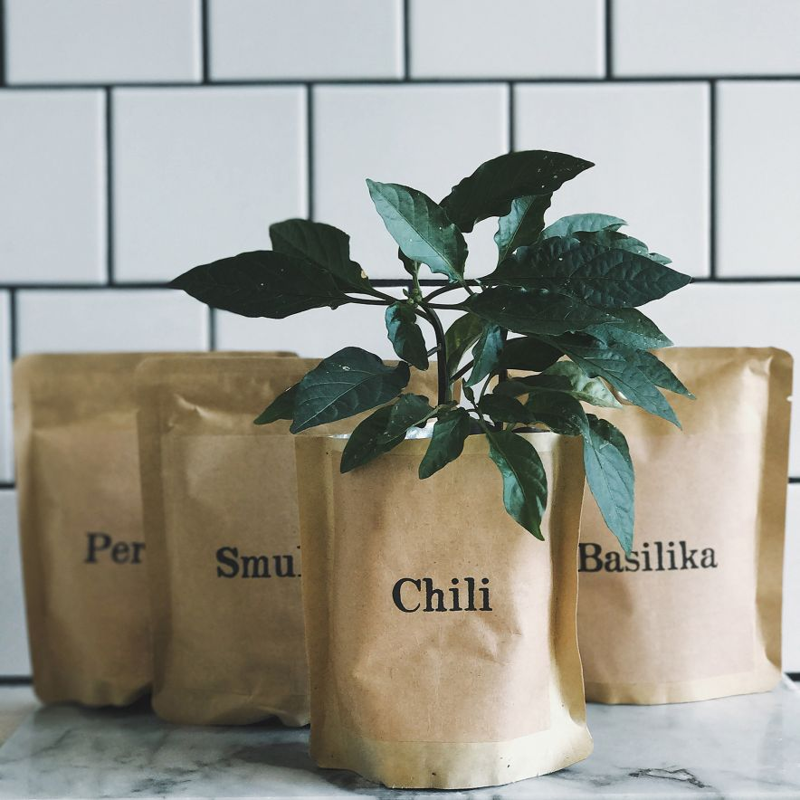 Odlingspåse Chili