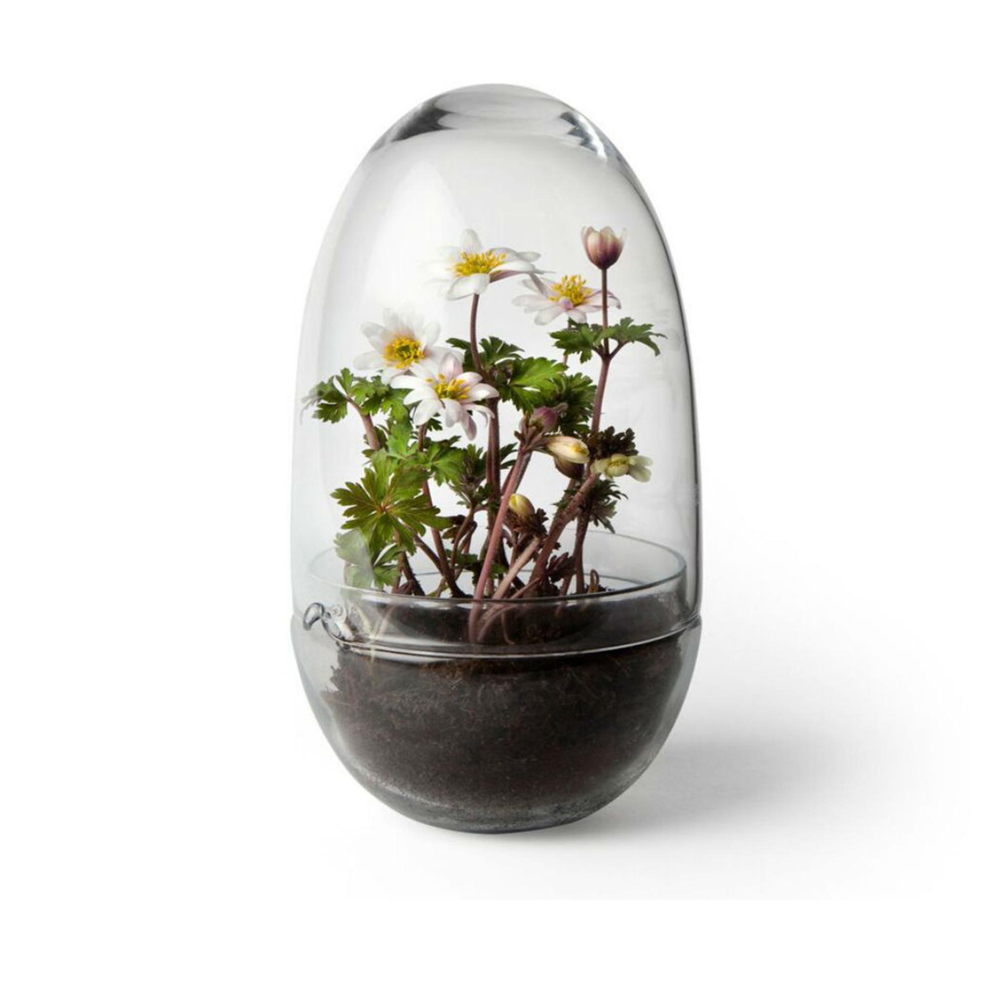 Designtorget Växthus Grow Glas M