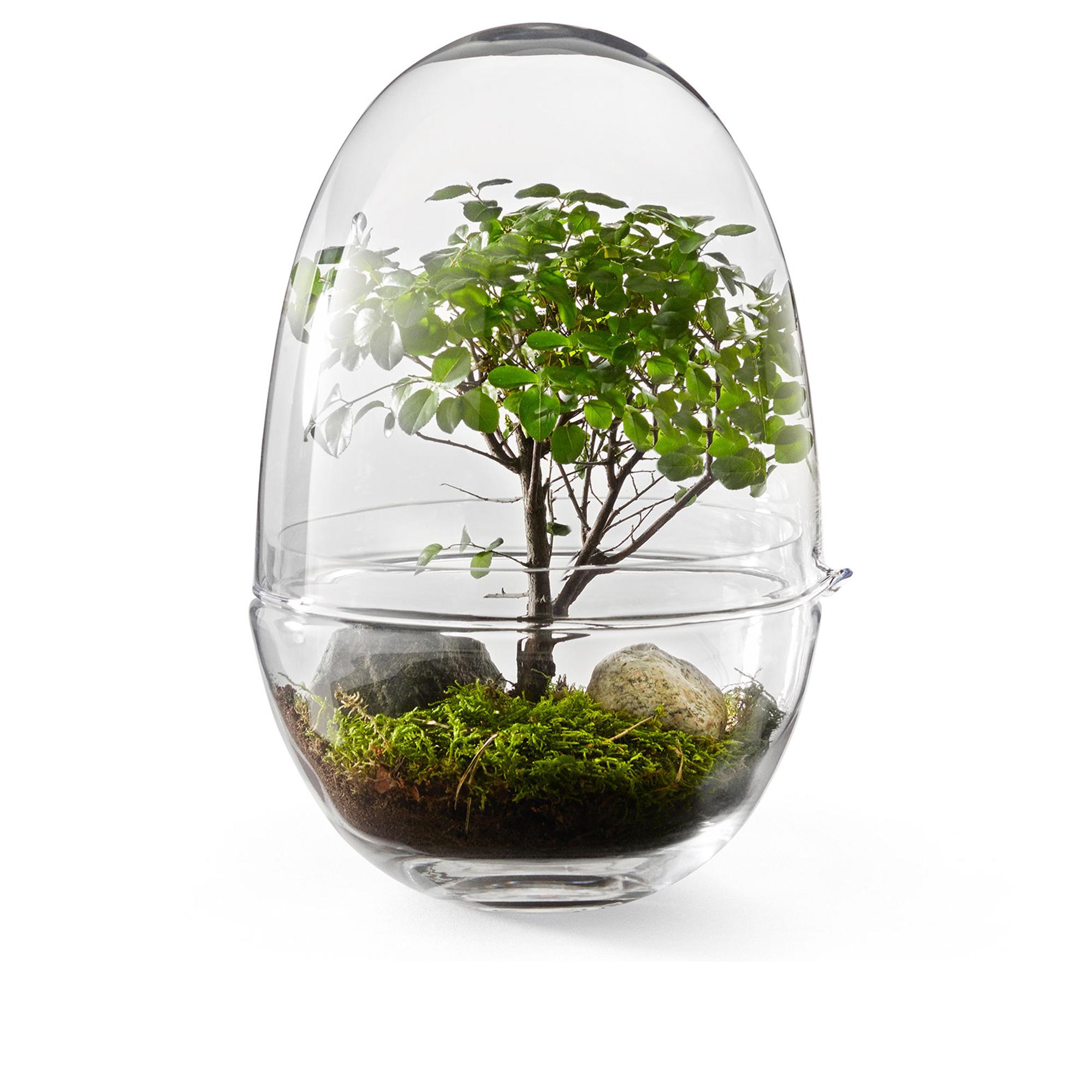 Designtorget Växthus Grow Glas L
